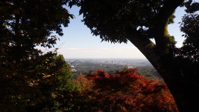 View towards Tokyo from Mt Takao