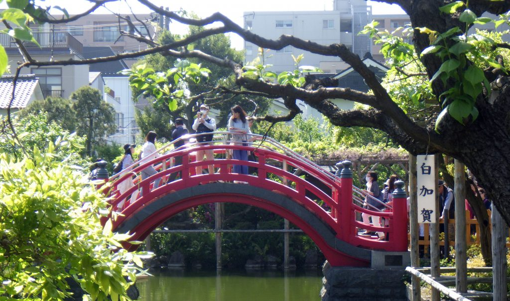 Taiko Bridge at Kameido Tenjin